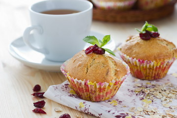 Muffins with cranberries and oatmeal