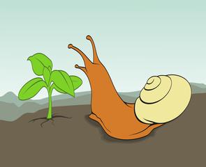 Schnecke vor einer Pflanze