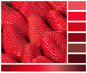 Fresh Ripe Strawberries In A Box. Palette With Complimentary Col