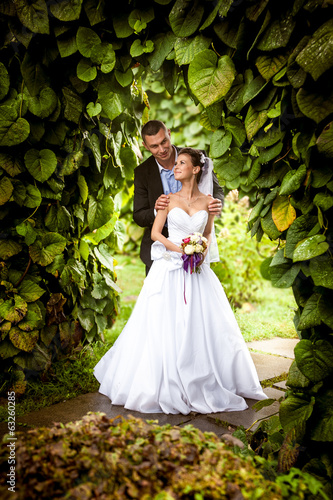 Handsome groom hugging bride from back under tree at park