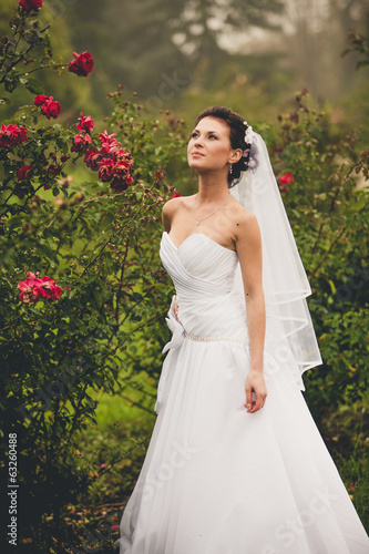 Toned portrait of sexy bride at rose garden