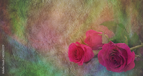Roses on colourful parchment banner