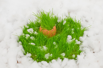 Easter egg with green grass over snow
