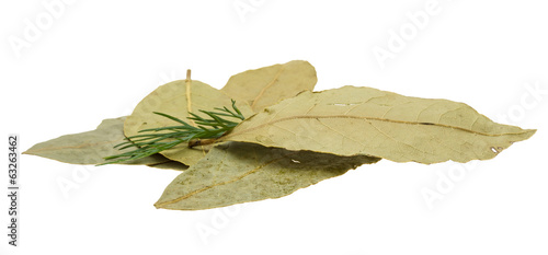 Laurel leaves heap