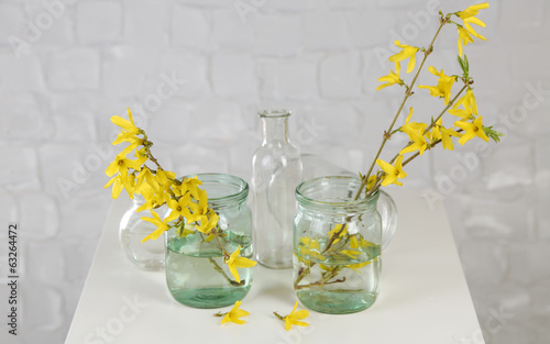 Beautiful Forsythia blossom in transparent jars