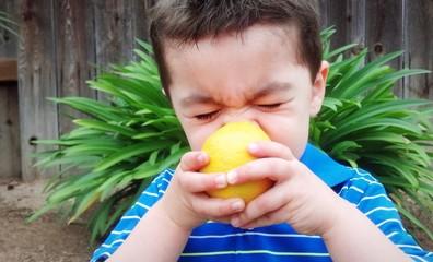 Cute mixed-race boy wincing as he eats a lemon.