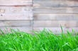 wooden fence background with  grass