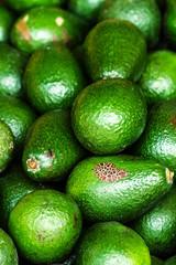 Fresh green avocado. Avocado background. Food background.