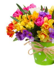 freesia and daffodil flowers in green pot