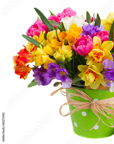 freesia and daffodil flowers in green pot