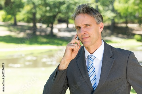 Businessman using cellphone in park