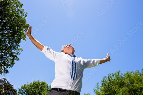 Carefree businessman with arms outstretched