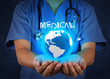 Medical Doctor holding a world globe in her hands as medical net