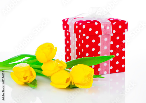yellow tulip flowers with red polka-dot gift box. on white backg