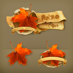 Maple leaf, retro vector icon