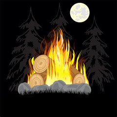 Campfire in wood