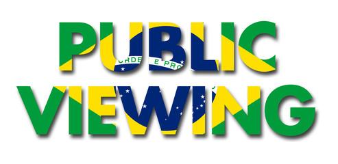 Public Viewing Brazil 2014