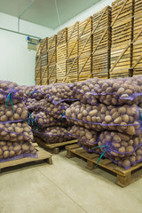 close up view on bags of potato in storage house