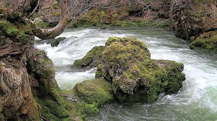 Roca en el rio
