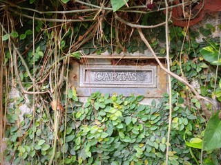 Postbox on wall with plants, Brazil