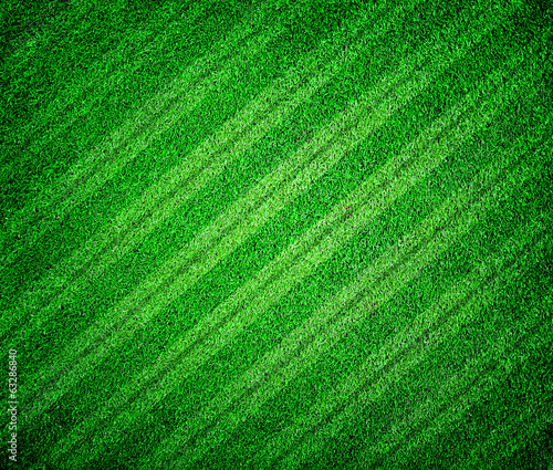 green grass lined football or soccer field