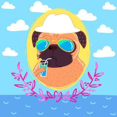 Pug on holiday