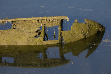 Detail of an old boat covered in seaweed