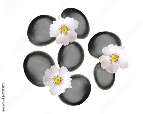 Black spa stones and white spring flowers isolated on white
