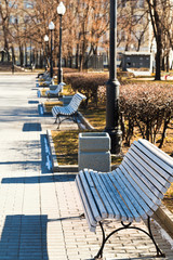 empty wooden benches in urban park