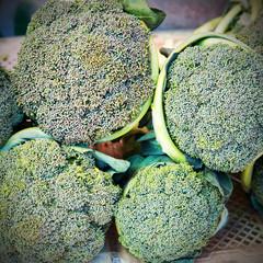 Fresh broccoli close up