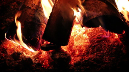 Burning campfire logs close shot