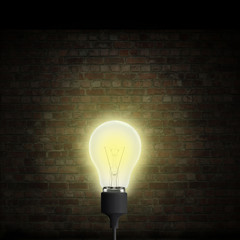Lightbulb brick wall