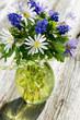 Obrazy na płótnie, fototapety, zdjęcia, fotoobrazy drukowane : Frühlingsblumen