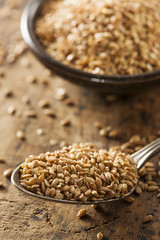 Organic Raw Flax Seeds