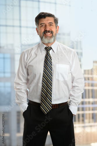 Senior Businessman With Beard