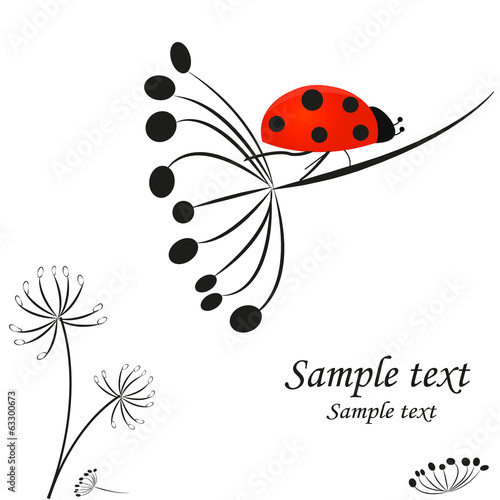 Dandelion with ladybird vector