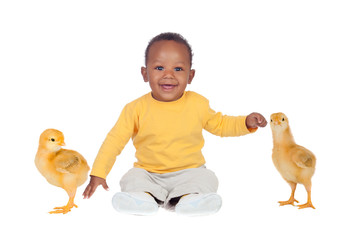 Adorable african baby sitting wity two little yellow chickens