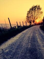 langhe al tramonto