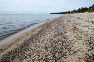Sandy shoreline with pebbles
