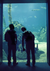 people in oceanarium