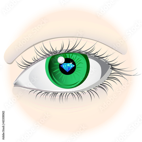 Diamond Reflection  in woman eye vector