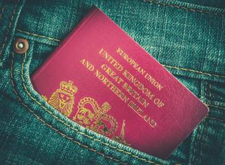 Jeans Pocket Passport