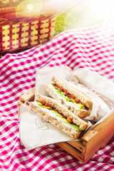 Healthy wholewheat sandwiches for a picnic