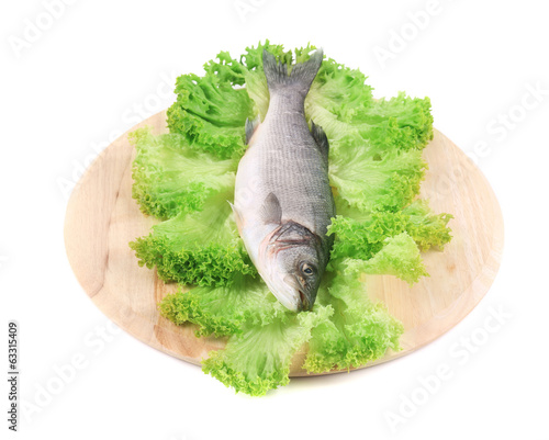 Fresh seabass fish on lettuce