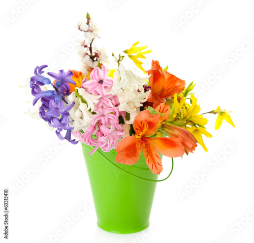 Beautiful flowers in metal bucket isolated on white