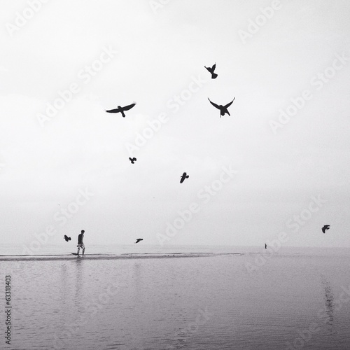 man walking on the beach with flock of birds