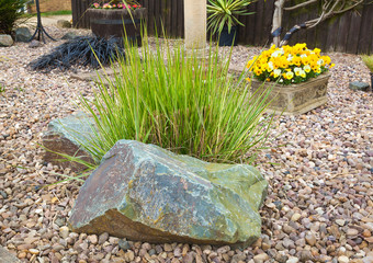 Ornamental grass set in rockery