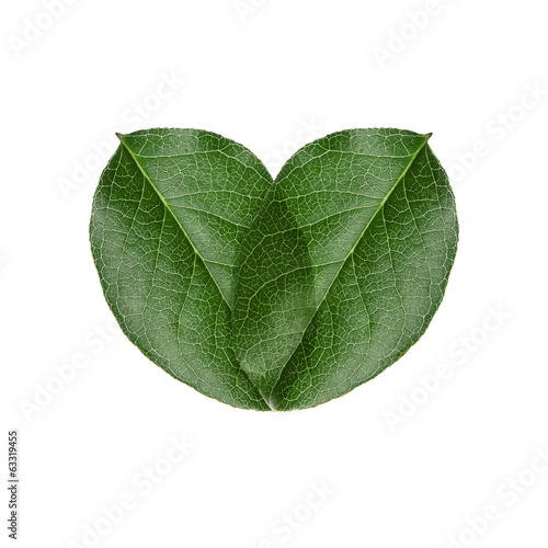 green heart leaves