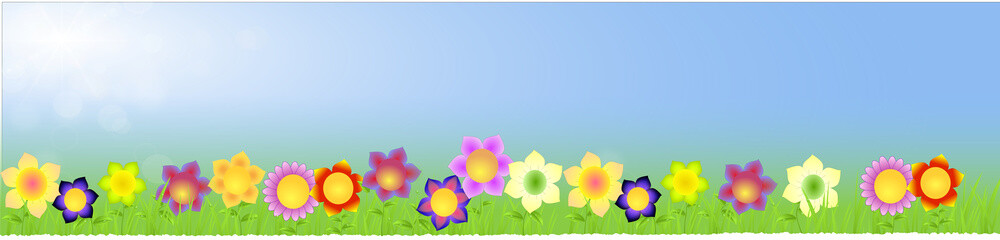 Banner with big flowers on the spring background