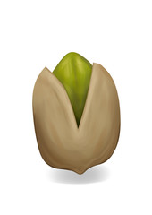 Simple, realistic brown pistachio illustration, front view.